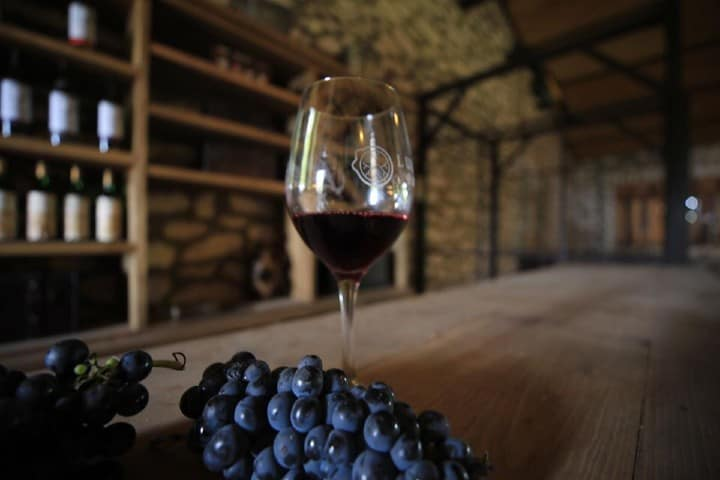 Copa de vino Luévano Ruiz. Foto de Alejandro Tello