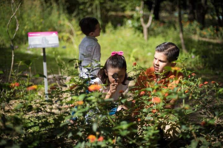 Jardín Botánico de la BUAP