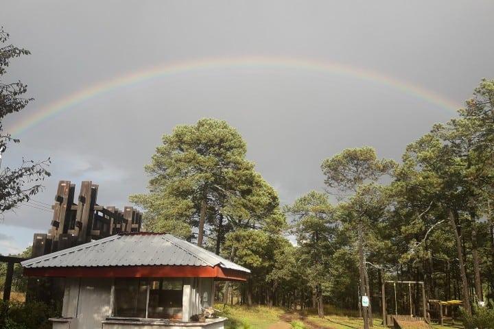 Ya sabes qué hacer en Durango, visita este parque Foto: Parque Ecológico El Tecúan