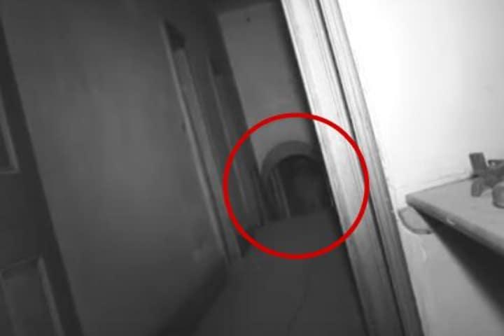 Foto de aparición fantasma en el Museo del Horror en Saltillo. Foto: Vix