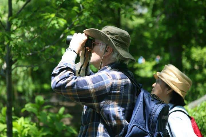 ¡Vamos a ver a las hermosas aves en SLP! Foto: Eje 21
