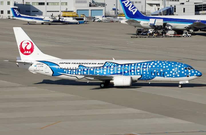 Tiburón ballena JAL - Foto airliner