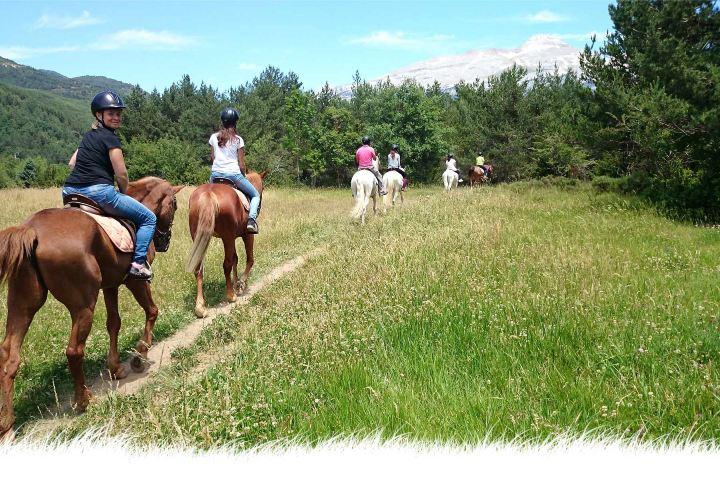 Disfruta de un paseo muy tranquilo en caballos. Foto de Ciudadypoder.mx