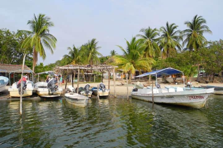 Estas lanchas están listas para que recorras toda la costa. Foto: Tourism Media