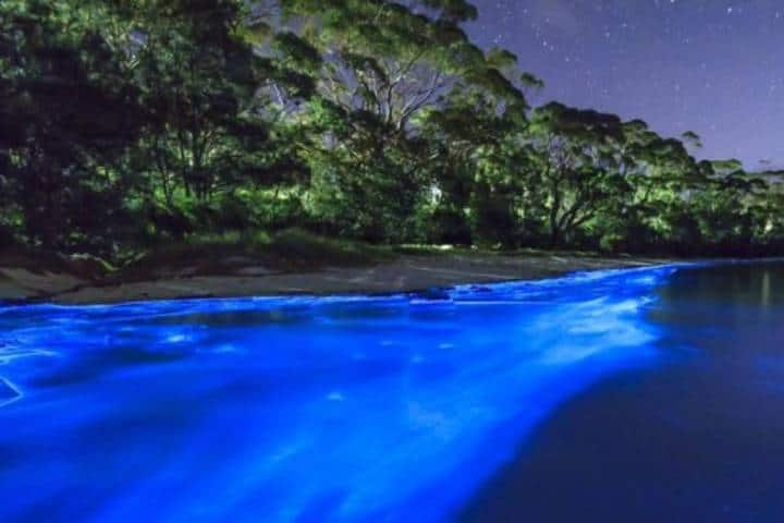 Luminiscencia orilla de playa Chacahua Foto: CDMX Press