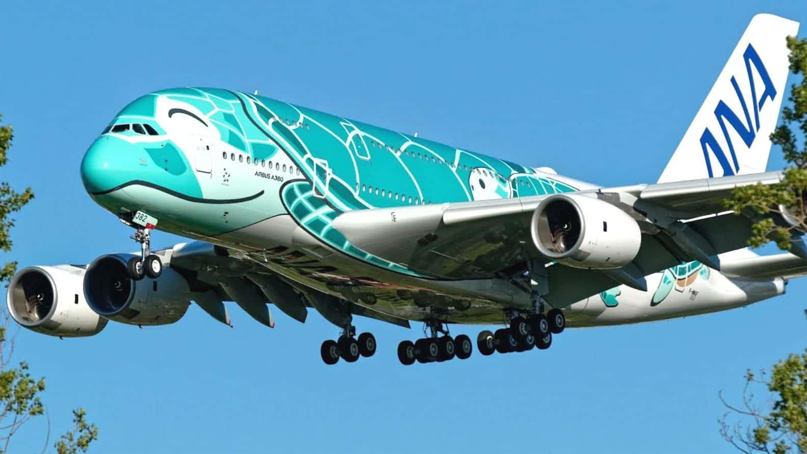 Flying Honu de ANA Foto YT