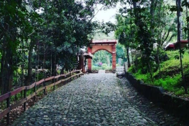 Camino de entrada al parque. Foto: Centro Ecoturístico Tzaráracua   Instagram