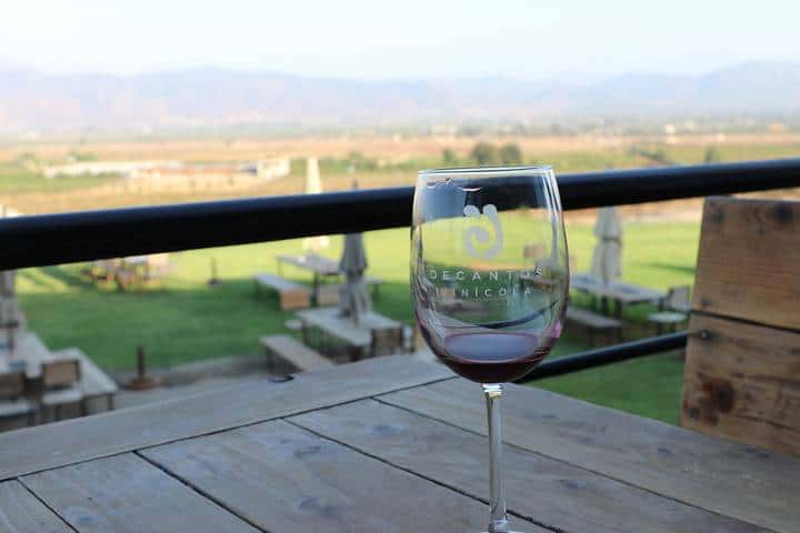 Cata de vinos en el viñedo Foto: Archivo