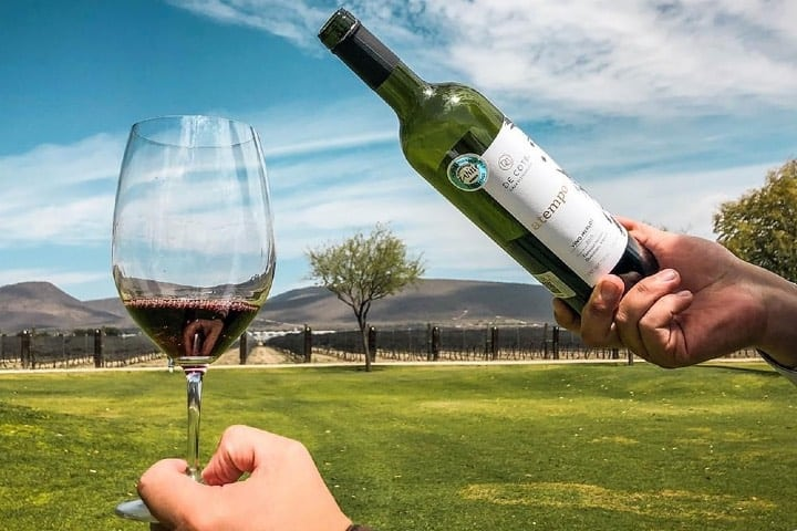 Disfruta de los vinos Foto DE COTE Casa Vitivinícola | Facebook