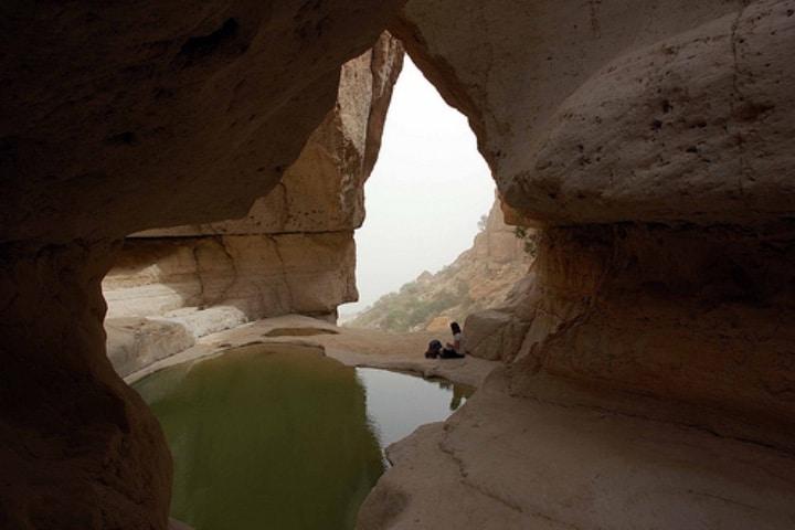 Disfruta lo que la Reserva Natural Ein Gedi tiene para ti Foto: Archivo