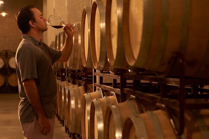 Estos vinos serán una delicia a tu paladar Foto Archivo