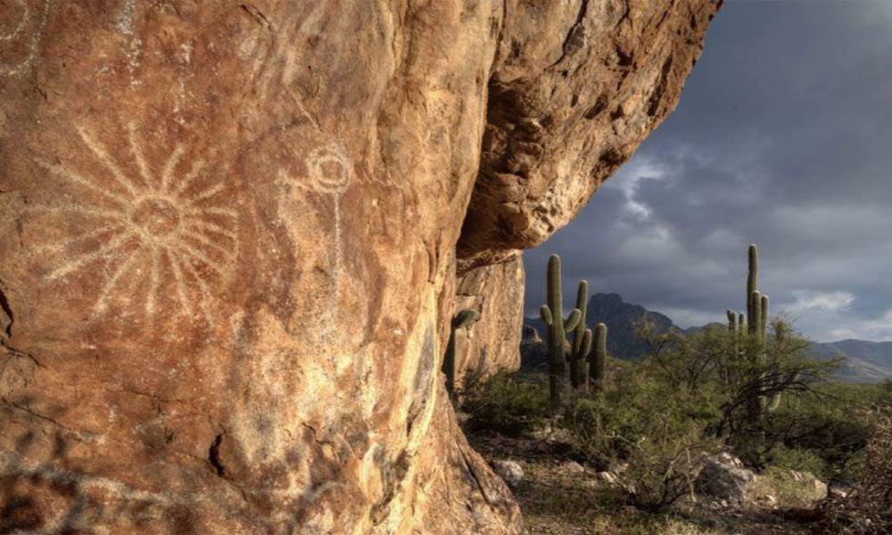 La Proveedora Sonora Foto: Cobertura 360