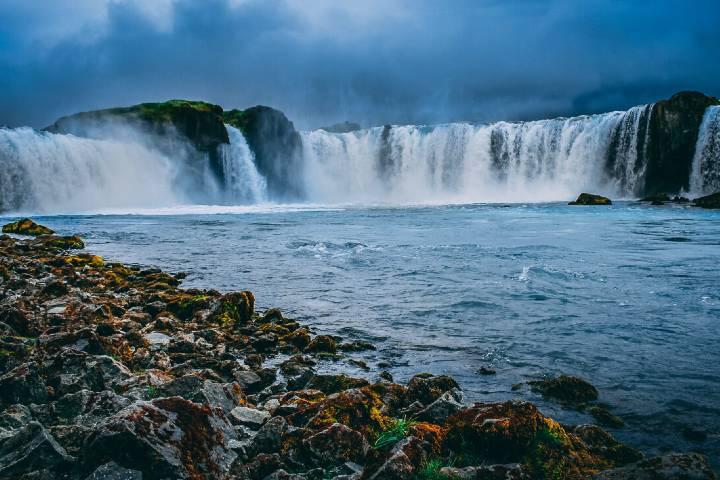 Foto: Arctic Shorex