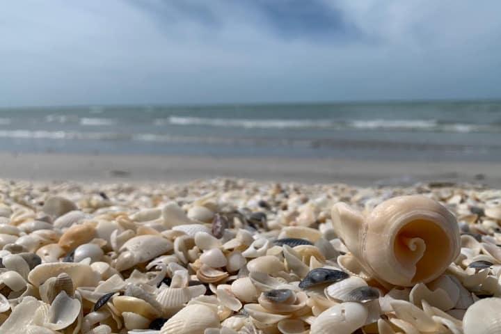 Las playas de Ciudad del Carmen te esperan para que disfrutes de una gran aventura Miroshlava Jiménez