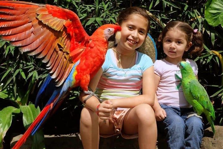 Los más pequeños pueden divertirse y aprender Foto: Reino Animal | Facebook