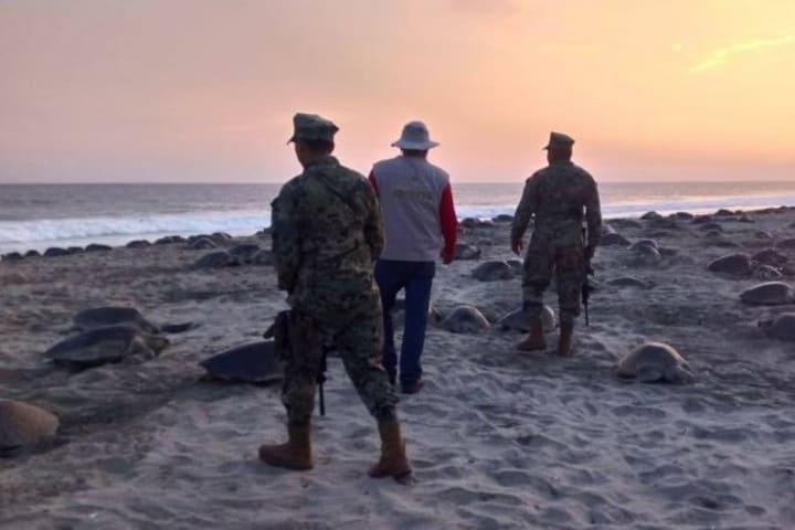 Militares resguardando el área de desove de tortugas Caguama. Foto: México Ambiental.