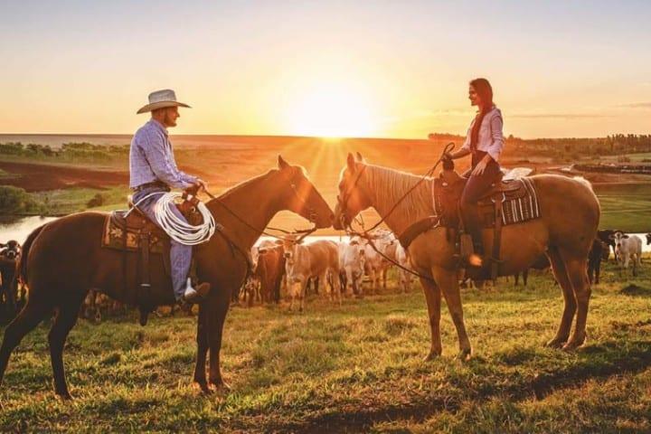 Montar a caballo es una de las actividades que puedes hacer aquí Foto: Casa de las Mascotas
