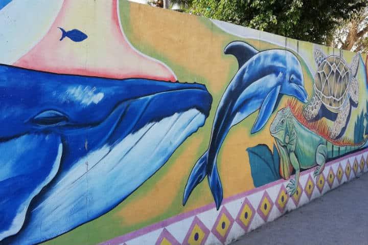 Murales y fauna de Nayarit- Foto Luis Juárez J.