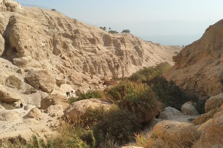 Reserva natural Ein Gedi en el Desierto de Judea. Foto SilverOrlov