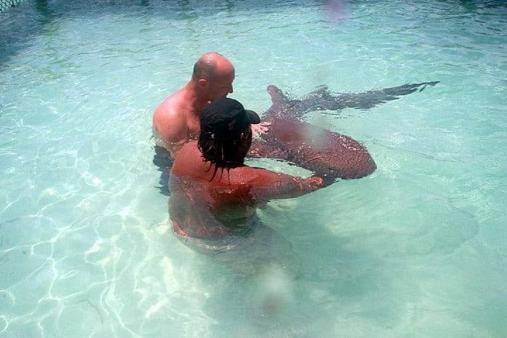 Tiburón Gato en Isla Mujeres Foto: jcarmado | Flickr