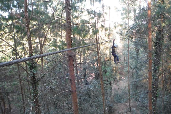 Tirolesa en el bosque Foto: Zacatlán Adventure