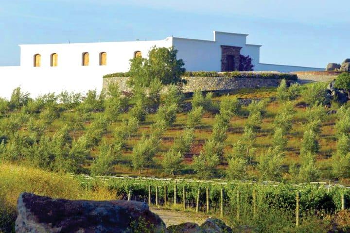 Vista del Noroeste de Chateau Camou. Foto: Naples Ilustrated.
