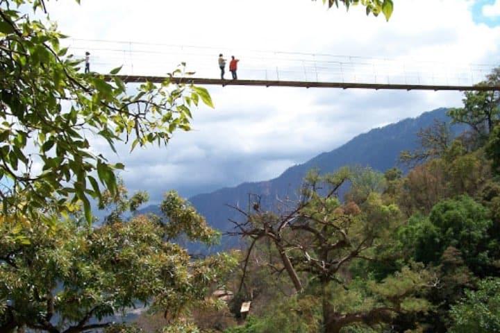 El Parque Natural Yosondúa es sinónimo de aventura Foto Organización Radiofónica de Oaxaca