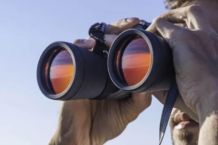 Los binoculares harán que tengas una mejor vista de las acrobacias de estas aves Foto: Archivo