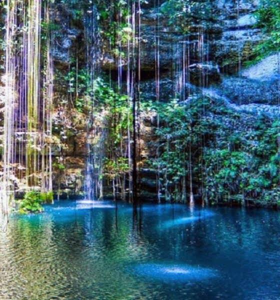Visita todos los cenotes que se encuentran en Yucatán. Foto: Travel Report
