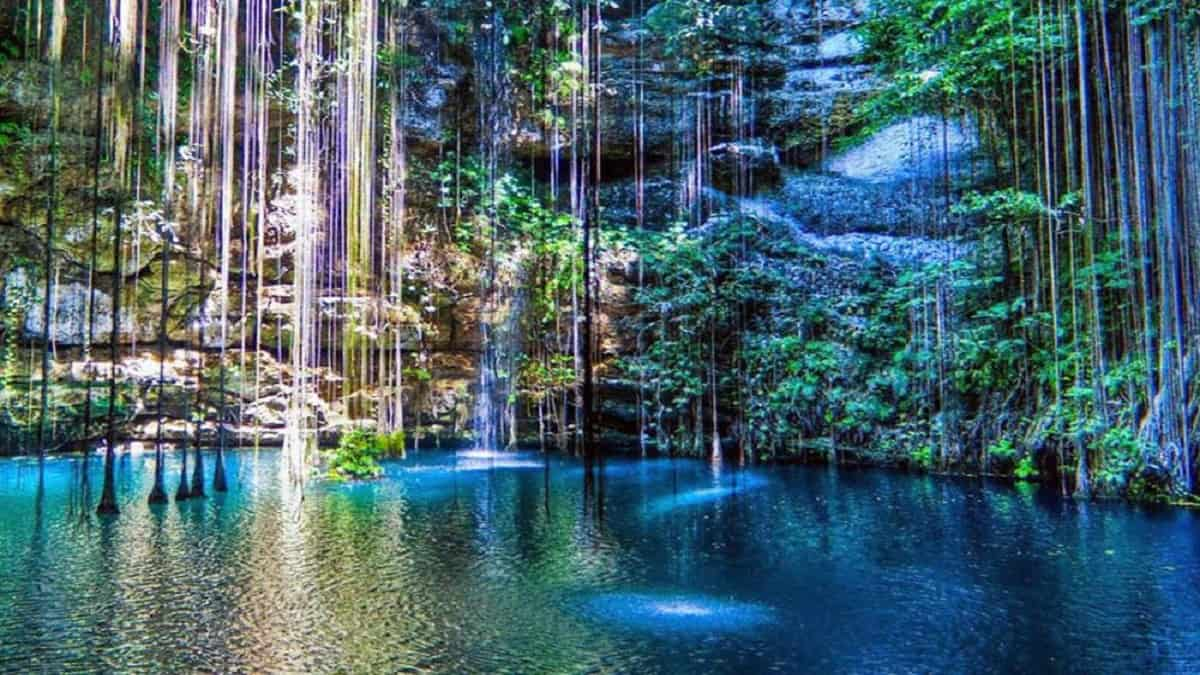 cenote en Yucatan Foto travelreport.mc