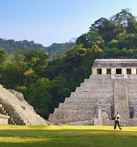 Palenque Foto: Lonely Planet