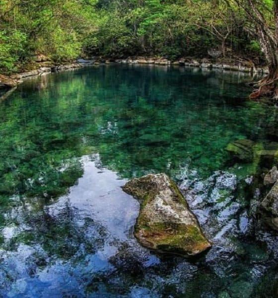 ¿No se te antoja refrescarte en las relajadas aguas de la Bocatoma? Foto: VisitaTamaulipas