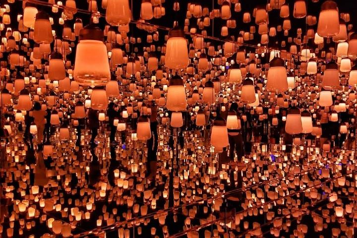 Las mejores fotos del Bosque de lámparas Foto: TeamLab Borderless | Facebook