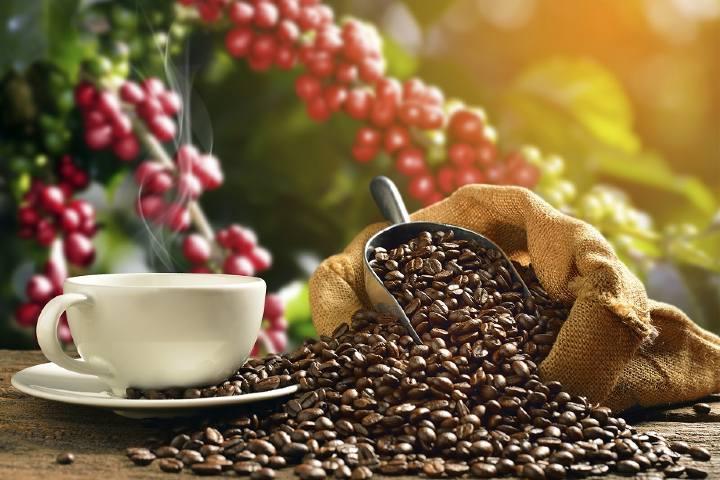 Café taza Foto: Monchi Time