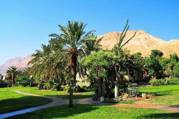 Ein Gedi posee uno de los jardines de Israel más bonitos. Foto: Archivo