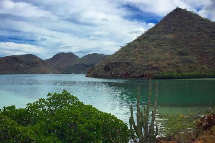 Playa Juncalito es conocida por la tranquilidad y amabilidad de su gente. Foto: a moms guide to traveling baja