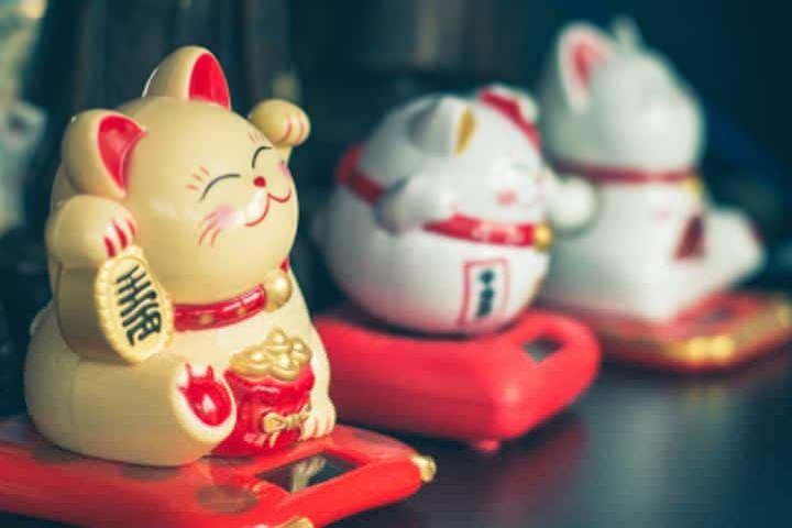 Sepicat Foto: Maneki-neko el gato de la abundancia