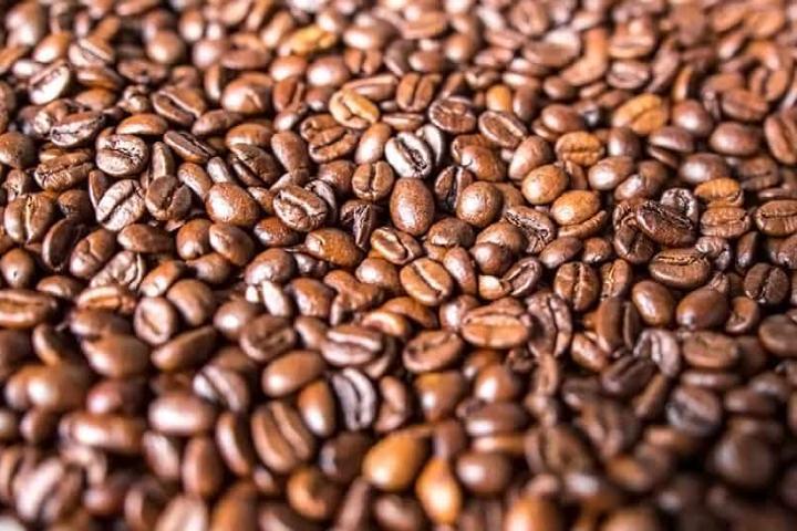 Granos de Café Foto: Con Café