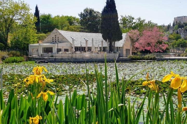 Jardín Botánico de Jerusalén. Foto: Archivo