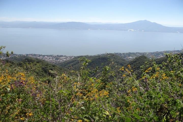 Ruta para senderismo La Cresta-Anillo Verde. Foto: Senderos de México