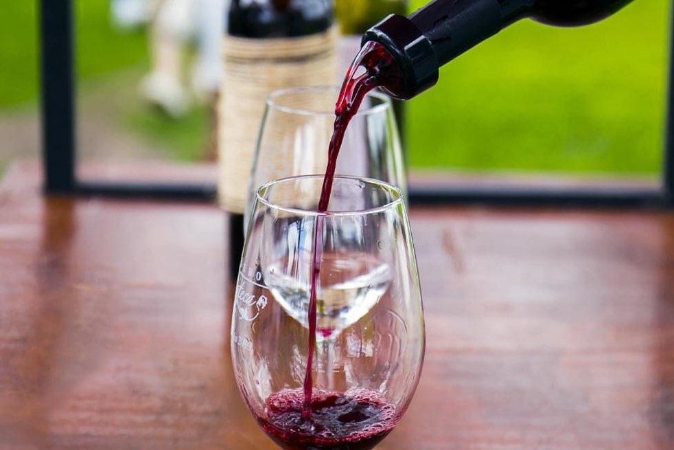 La experiencia en Viñedos Azteca te hará degustar de los mejores vinos Foto: Archivo