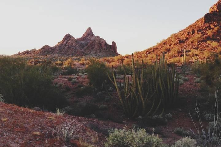 Los alrededores del Pueblo de Ajo, un pueblo de Arizona. Foto: Kevin Russ