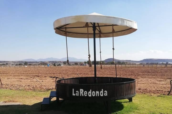 Los viñedos La Redonda