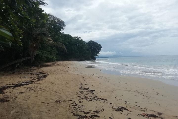 Playa Manzanillo Foto: Jorge Peralta