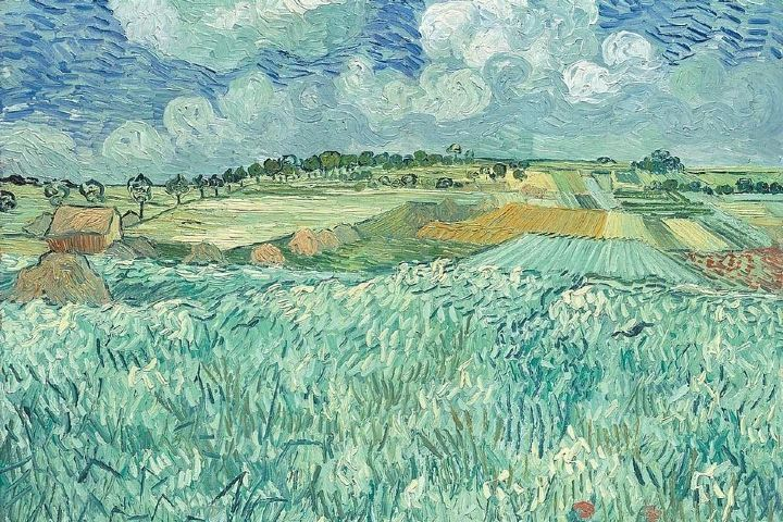 Seccion-del-Plain-near-Auvers-de-Vincent-Van-Gogh-Foto-vangoghthelife
