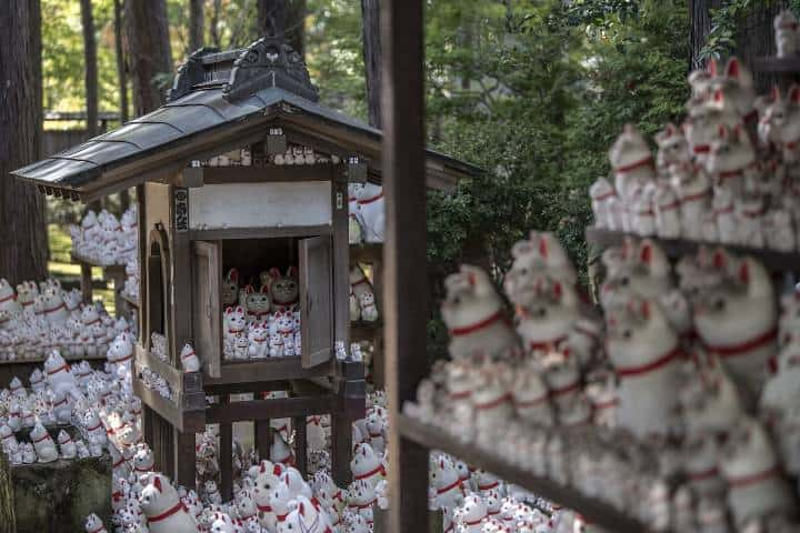 Templo Gotokuji Foto: Archivo