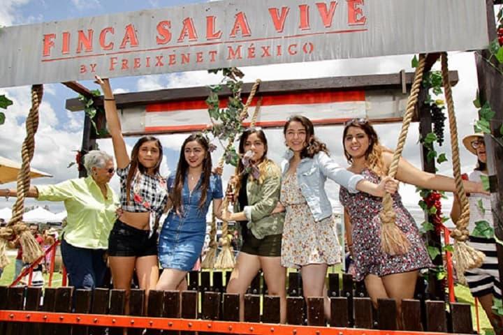 Sí que se ven divertidas las vendimias, ¿No? Foto: De paseo en Querétaro