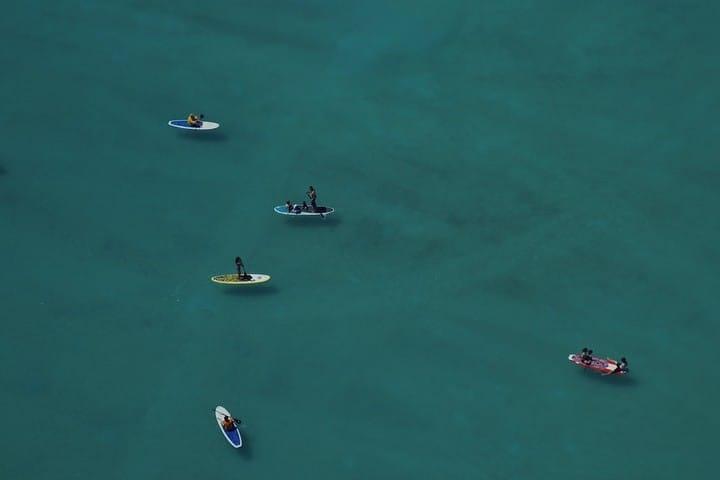 Vídeo Paddle board con ballenas. Paddle board. Imagen. Jad Limcaco