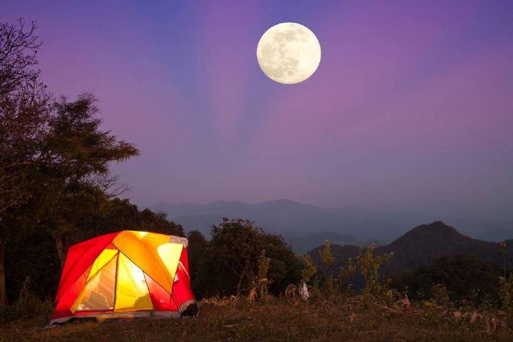 Disfruta de la noche al acampar en la Sierra de Órganos. Foto: Freepik