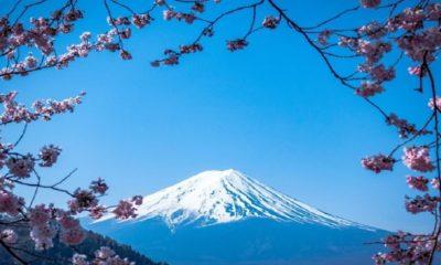 La vista que ofrece que Monte Fuji parece de fotografía. Foto: Periodista en Japón